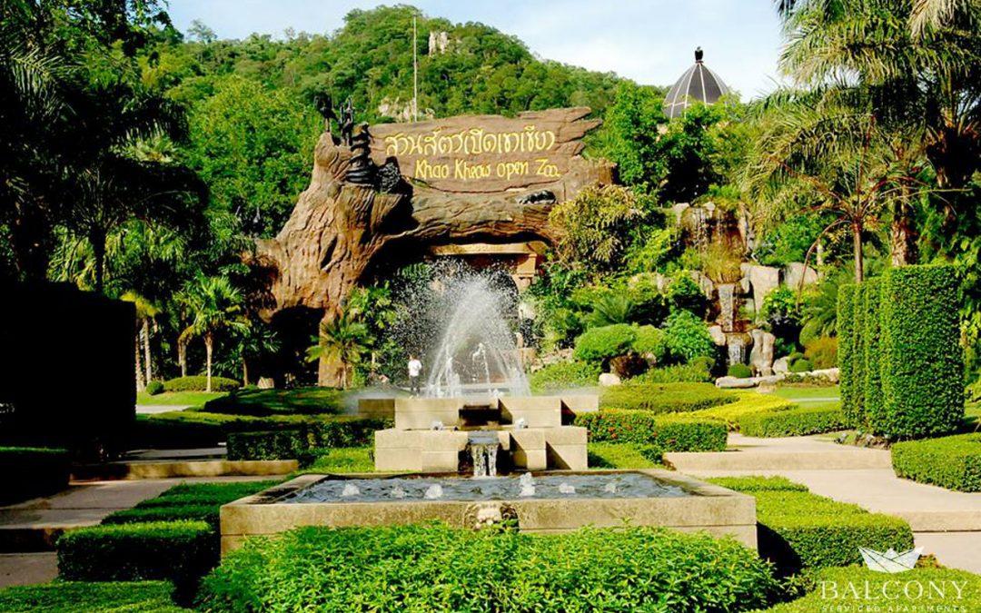 พาเที่ยวสวนสัตว์เปิดเขาเขียว… แหล่งท่องเที่ยวสำหรับครอบครัว